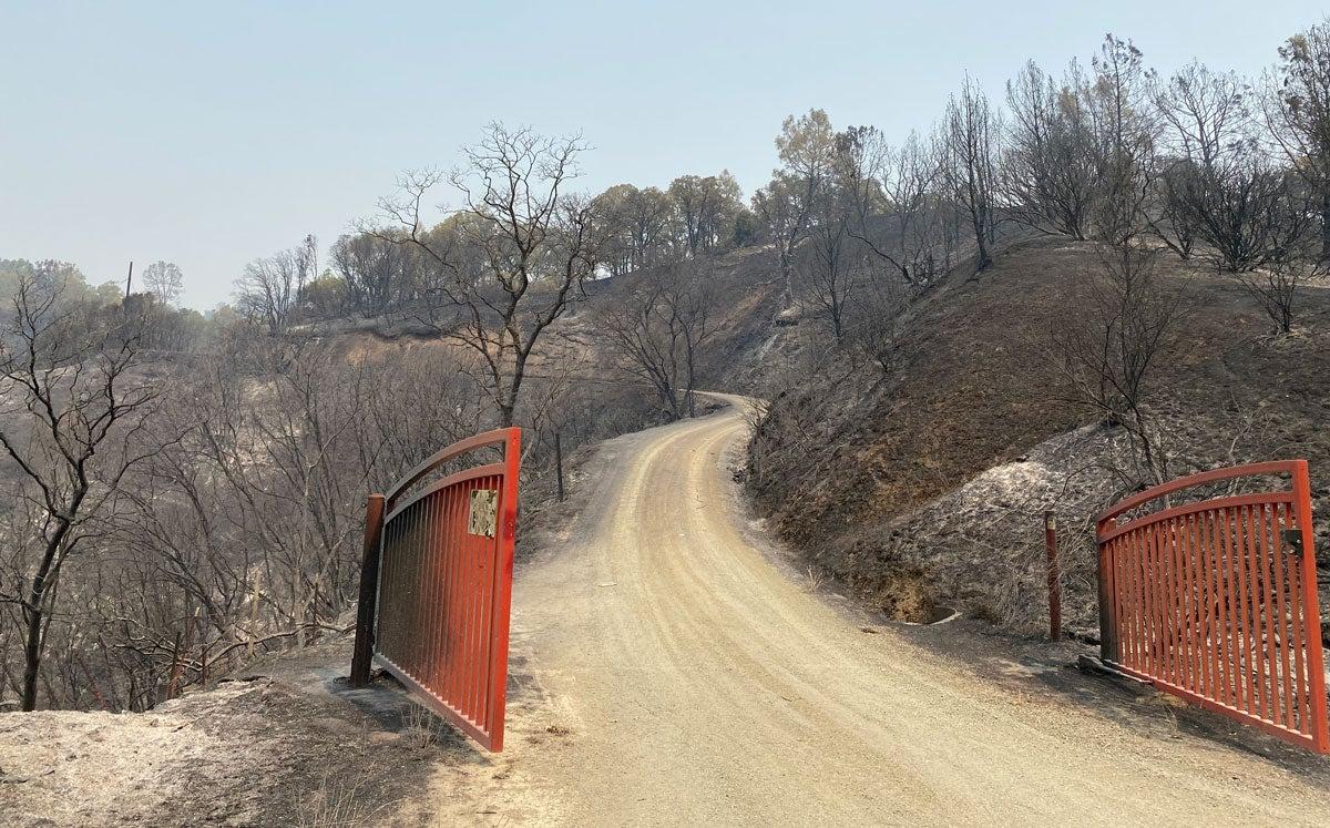 Iron entrance goat, blackened ground beyond