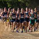 cross country uc davis