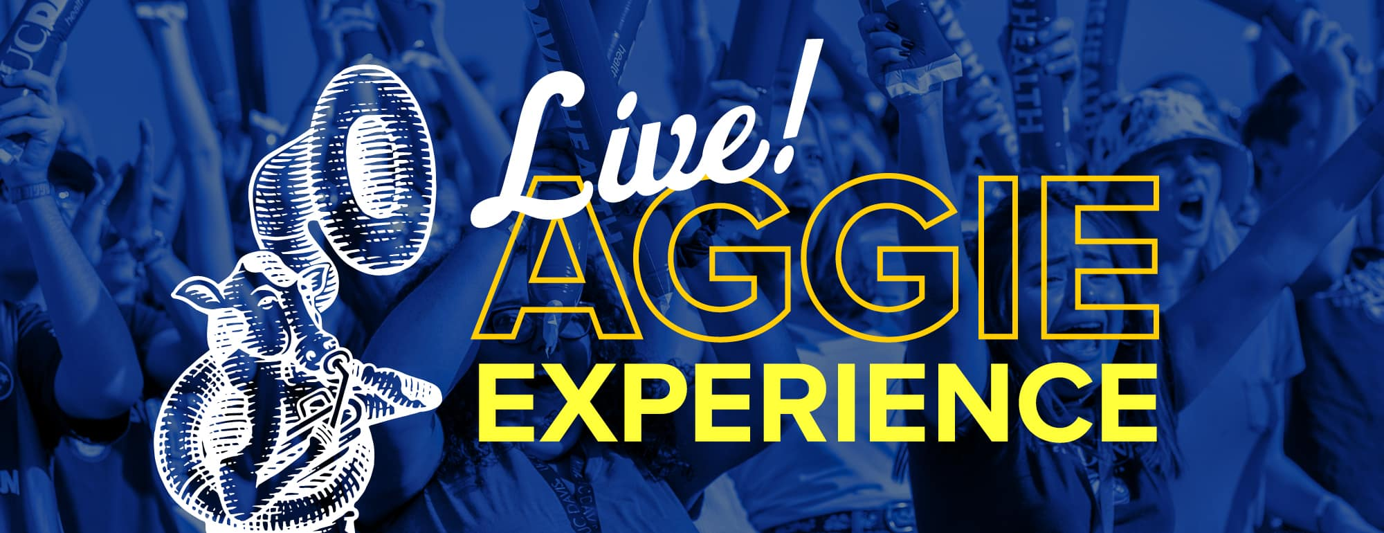 "students cheering in behind graphic of a cow playing a sousaphone ""Aggie Experience Live!"""
