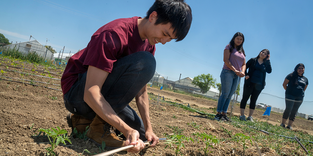 agricultural and environmental education major, from Shanghai, China checks soil moisture near greenhouses