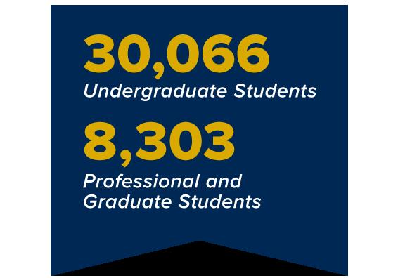 30,066 undergraduates and 8,303