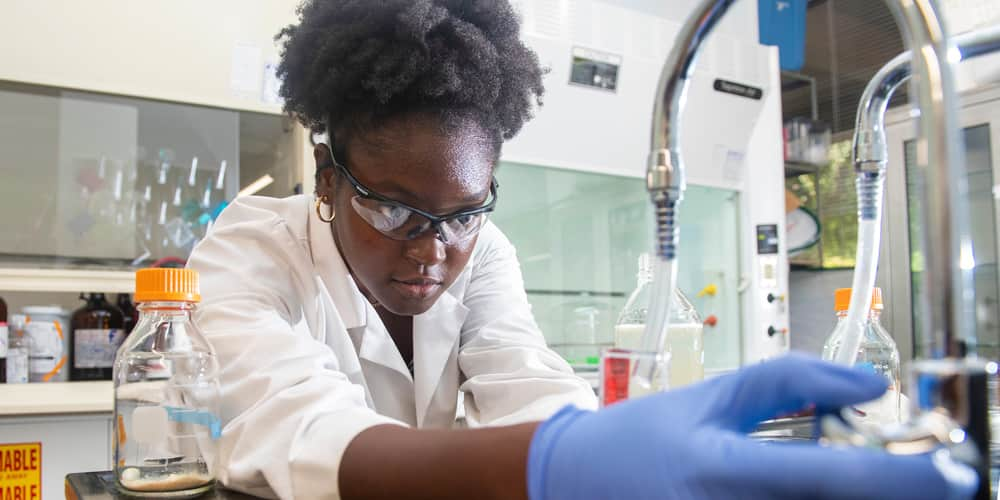 student working in a lab - major requirements college of biological sciences