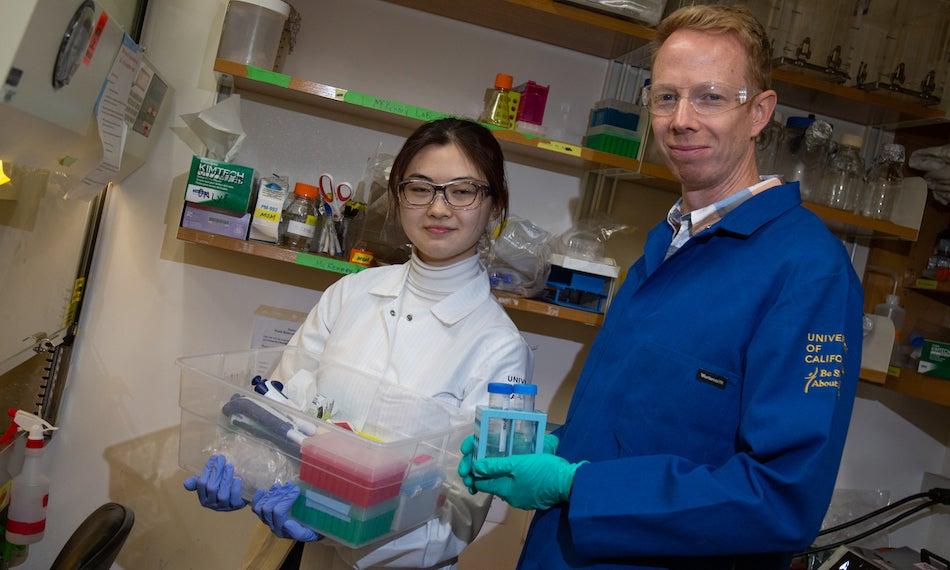 Baskin Research Award Winner Wenzhe Li stands with Assistant Professor Richard McKenney, Department of Molecular and Cellular Biology. Li and McKenney investigate the molecular motor cytoplasmic dynein. David Slipher/UC Davis