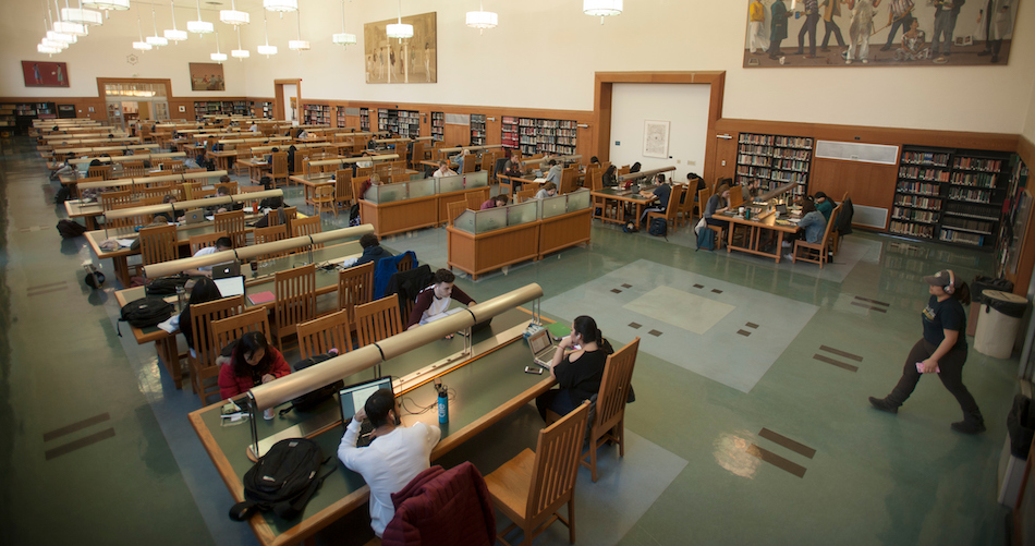 Students study in the main reading room at the Shields Library. (Gregory Urquiaga/UC Davis)