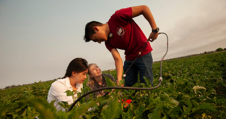 "Undergraduates Aya Suzuki, a biosystems engineering major; Mackenzie Gulliams, a civil and environmental engineering major, and Marcoluis Garcia, hydrology major, work together to get measurements of soil moister content during a new agricultural research project on crop irrigation undeground with a modern computerized irrigation/fertilization system at the Campbell Tract on July 3, 2018.  The tomato research field is a study in managing water and fertilizer together to minimize groundwater contamination, ""Fertigation."""