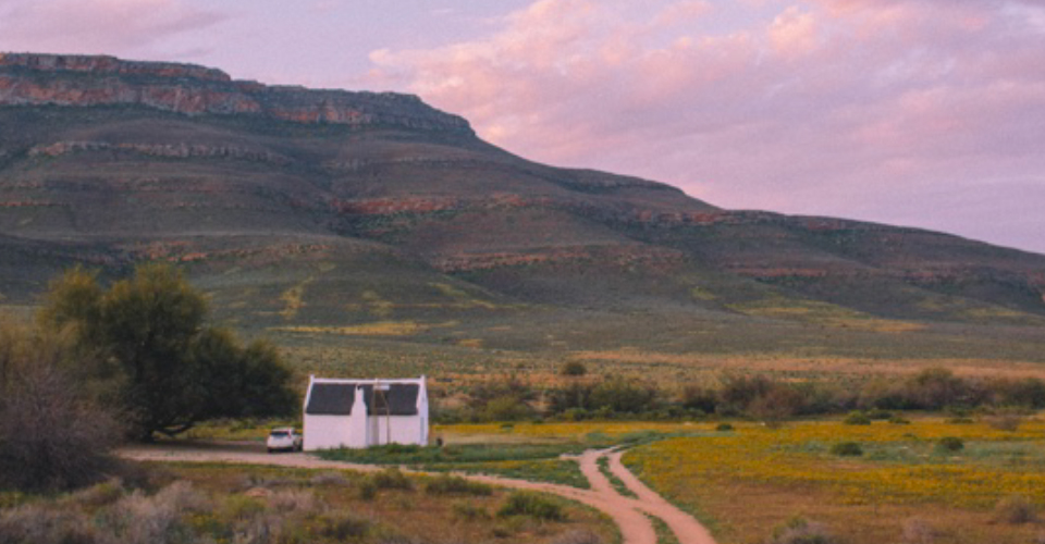 During study abroad, Dea and his friends often rented cars and went on weekend trips out of Cape Town, this is in the Cederberg Mountains during the annual spring flower bloom. (Matthew Dea)