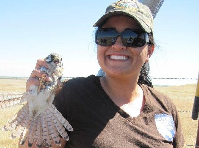 Angela Calderaro smiles and holds a falcon.