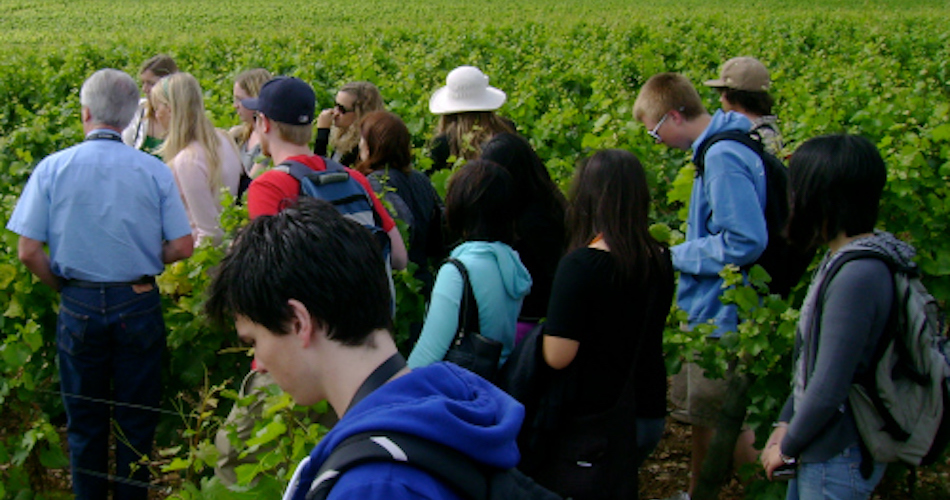 UC Davis students during a winemaking course in France.