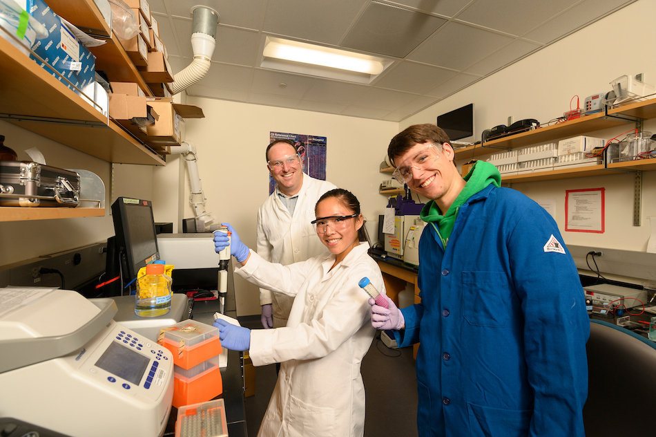 Associate professor Justin Siegel, Peishan Huang, a chemistry major, and  Ryan Caster, a master student and lab manager, are working on the new Food Valley, which is a Big Idea, on August 27, 2019.