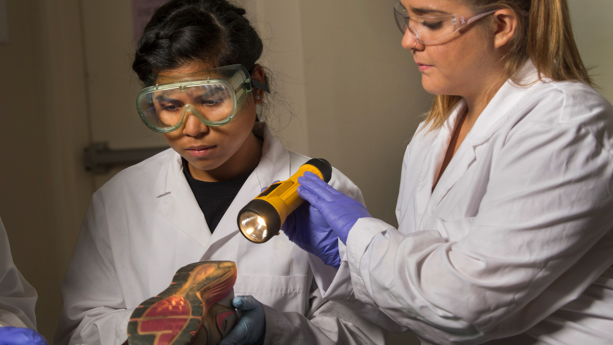 Forensic studies graduate student Arbie Manuel, left, inspects a shoe sole with assistance of fellow student Alina Rezilla