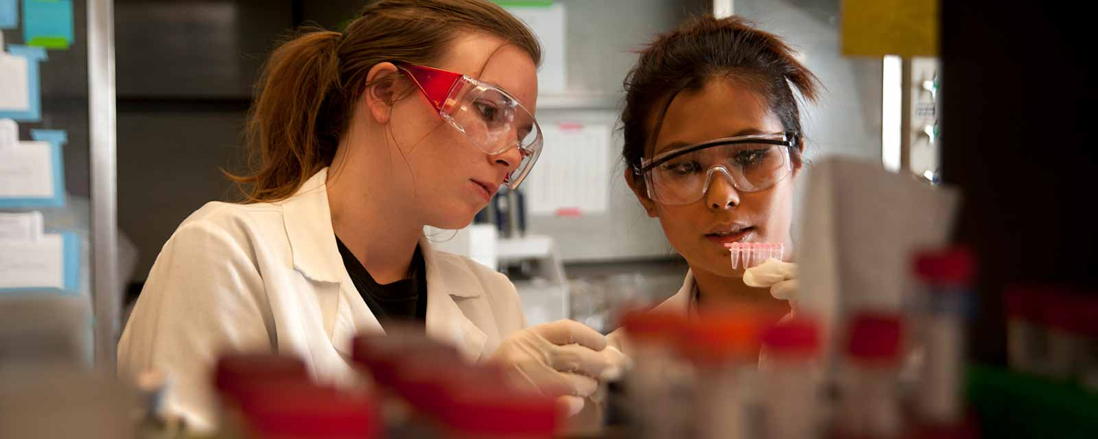 Two women in a lab
