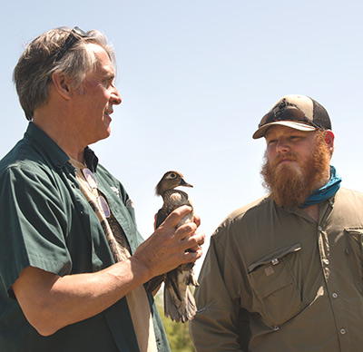 Professor John Eadie, left, holds wood duck and shows to student intern Skylar McAnelly