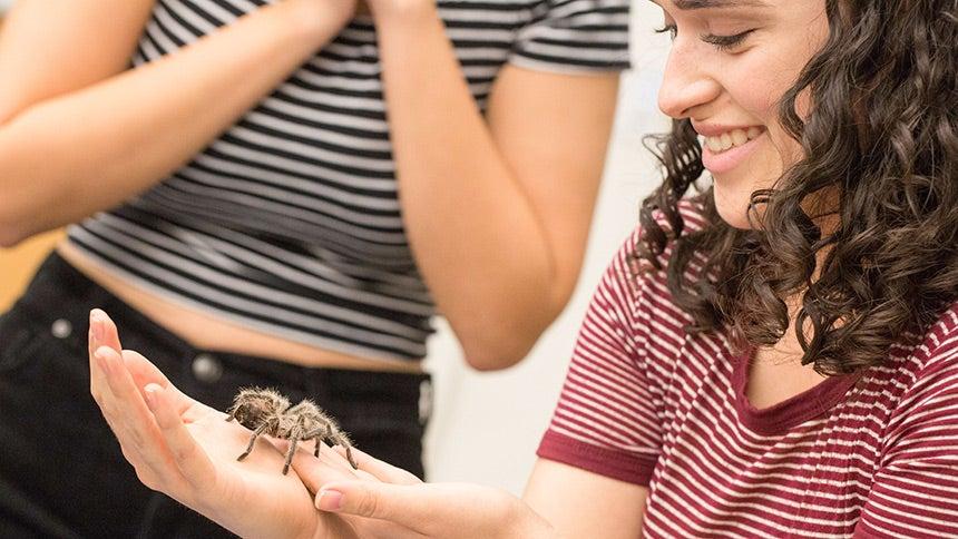 Female student holding a tarantula
