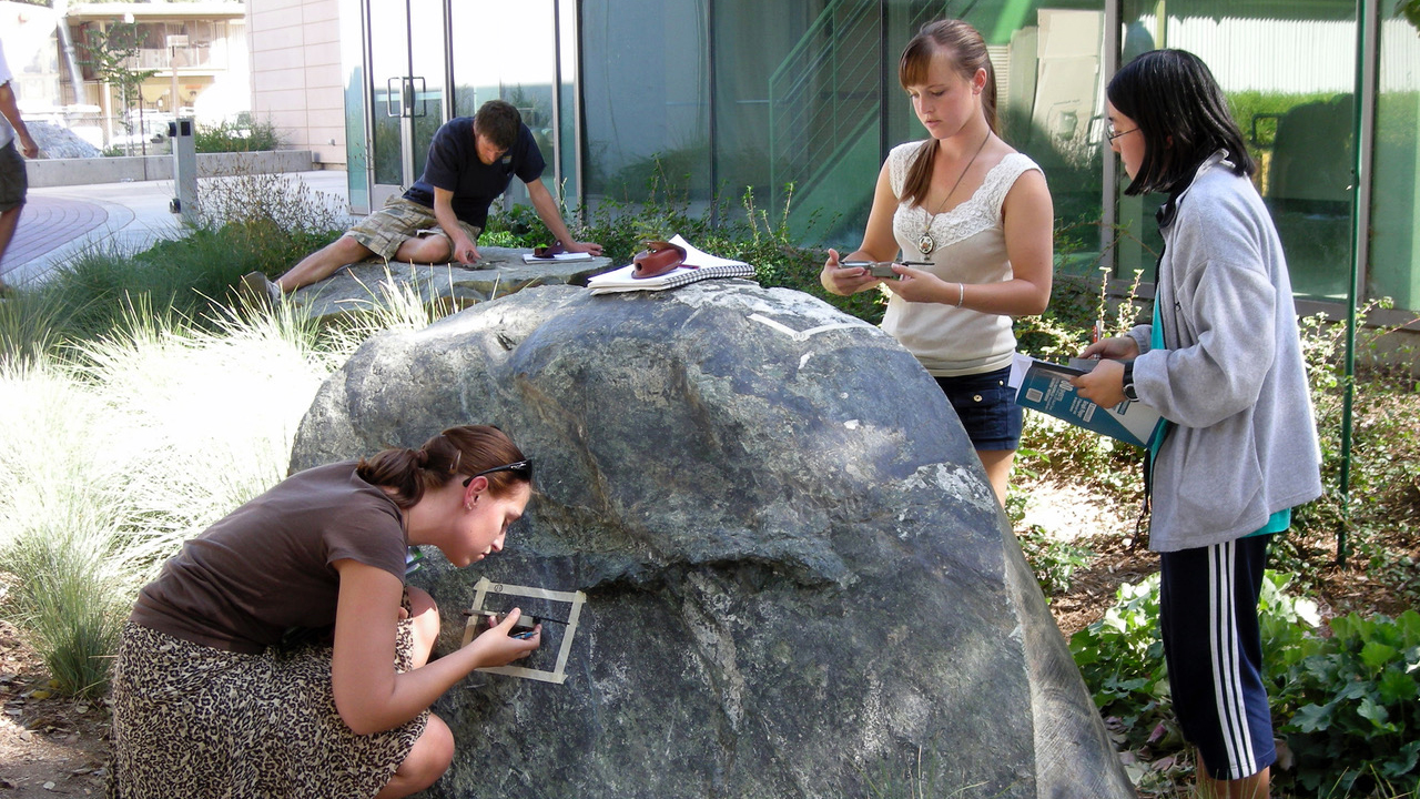 Several students studying rocks