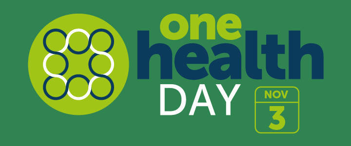 One Health Day graphic