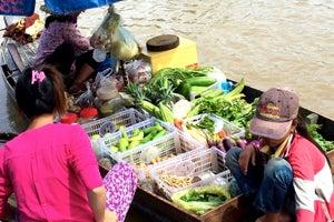 produce delivered to village