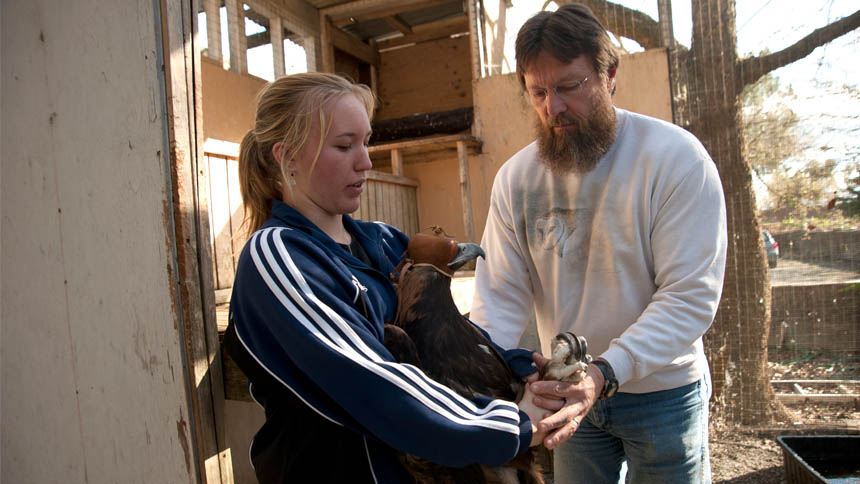 A young woman learns how to hold an eagle with an expert handler beside her.
