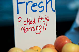 "a box of peaches with a handwritten sign that reads ""Fresh, picked this morning"""