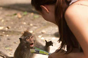 A woman interacts with a monkey on a city street