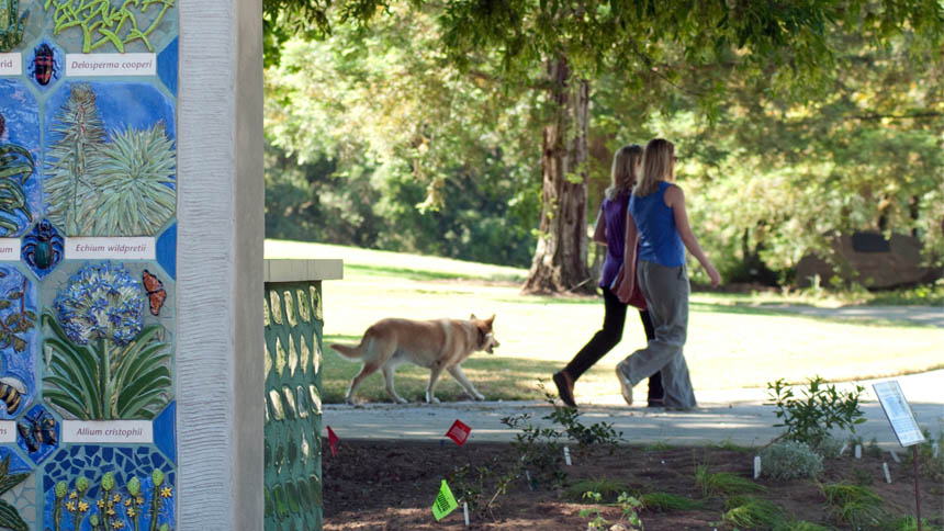 Two women walk a dog on a garden path