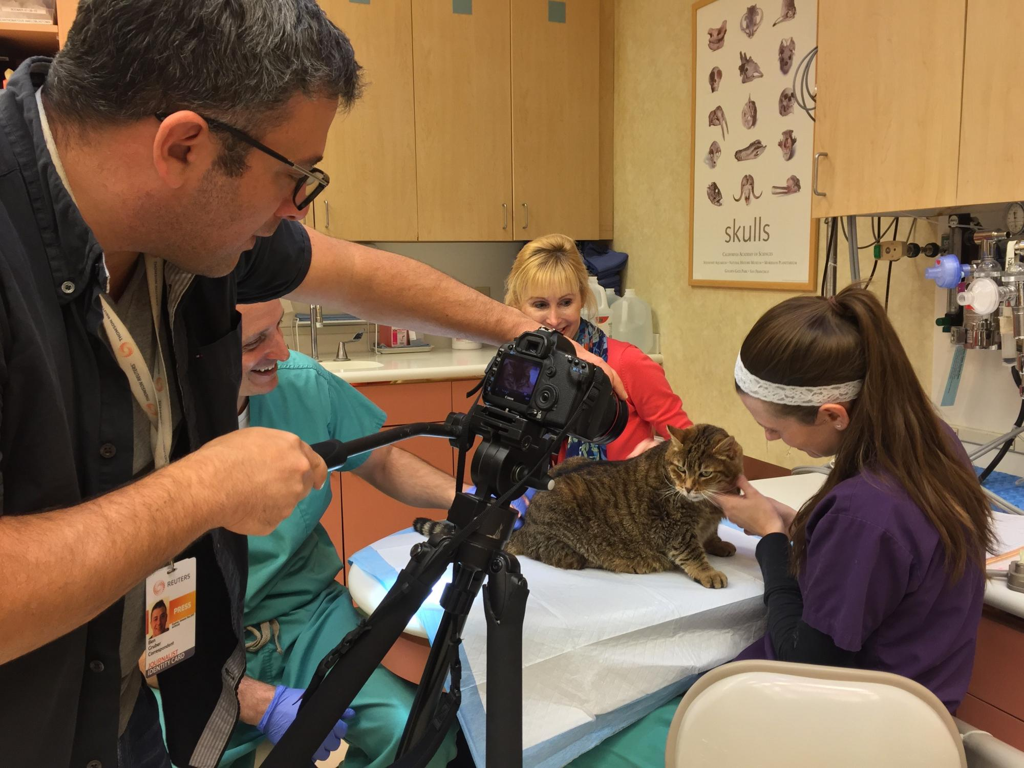 Smokey the cat steals the scene on a Reuters video
