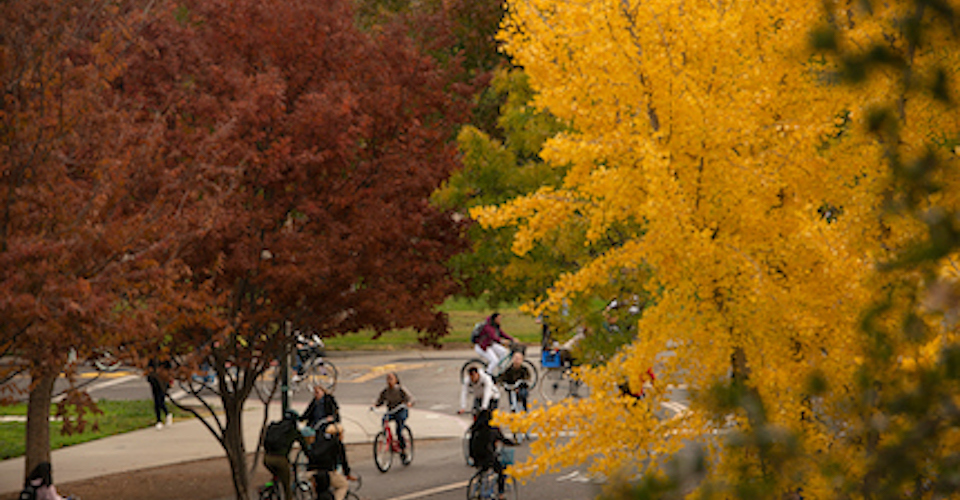 The red and gold of autumn arrived on campus as students cycled on Sprocket Bikeway November 27, 2018.