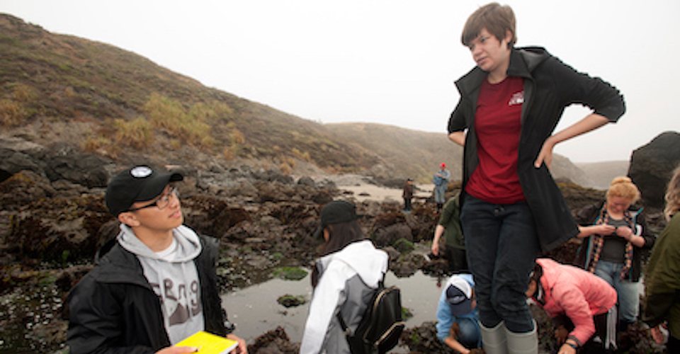 Marina Vollin, an evolution & ecology major, talks with Allen Huynh during a summer class at Bodega Marine Lab at Pinnacle Gulch Tide Pools.