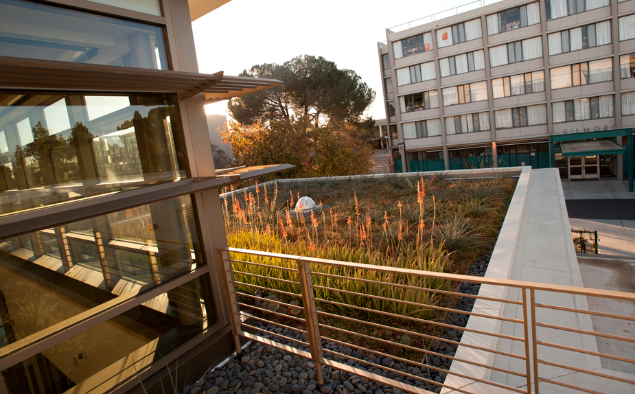 Uc Davis Named Most Sustainable University In The World
