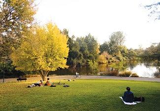 students sitting on the lawn enjoying the arboretum