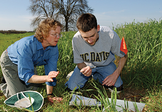 A male student and female teacher analyzing plant samples outdoors