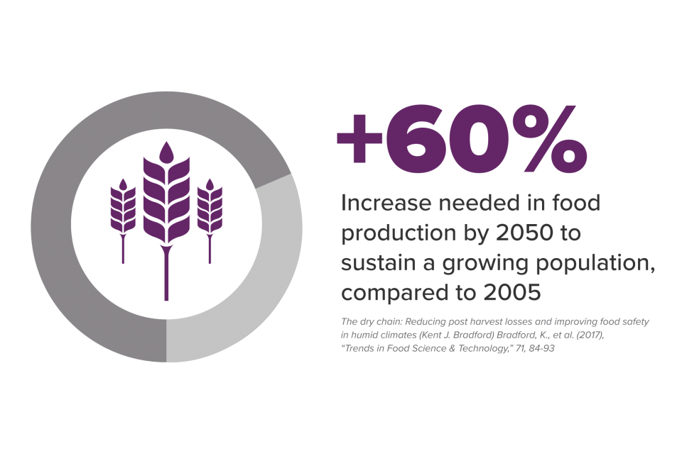 60 percent increase needed in food production by 2050