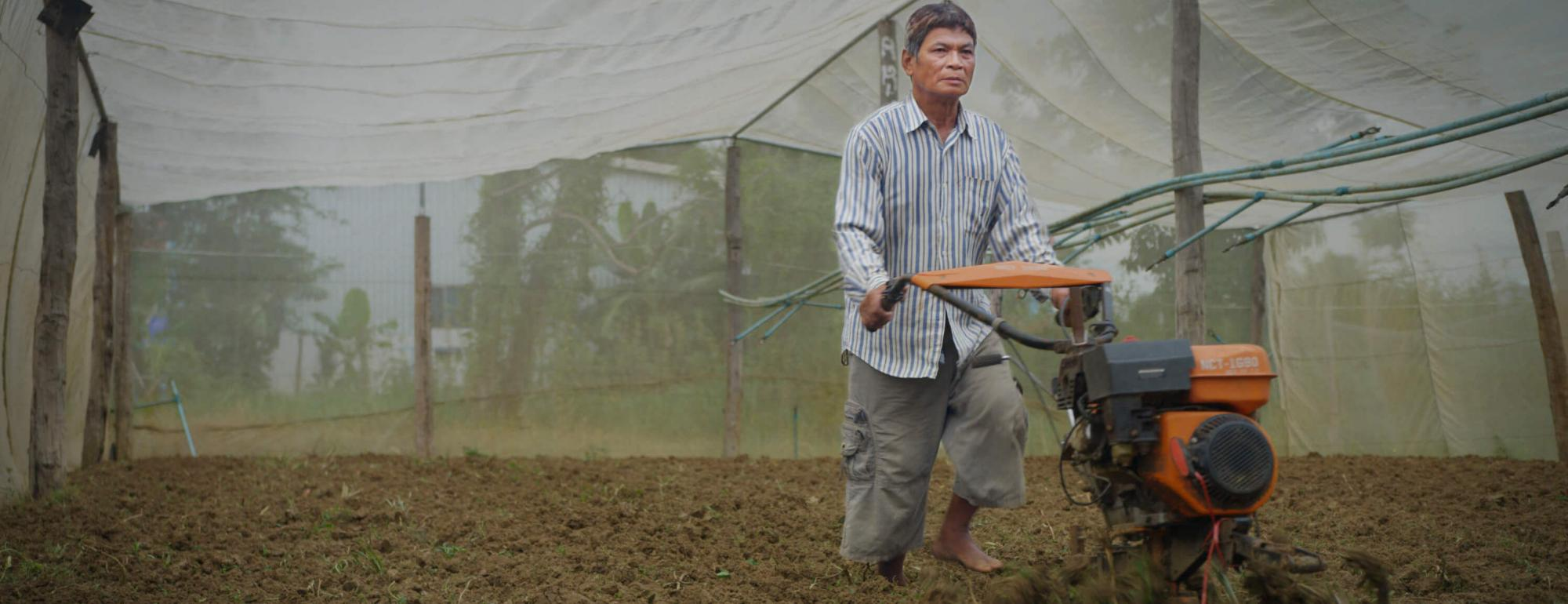cambodian farmer working in field