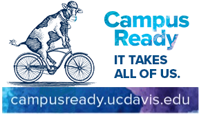 Campus Ready graphic, cow on bicycle