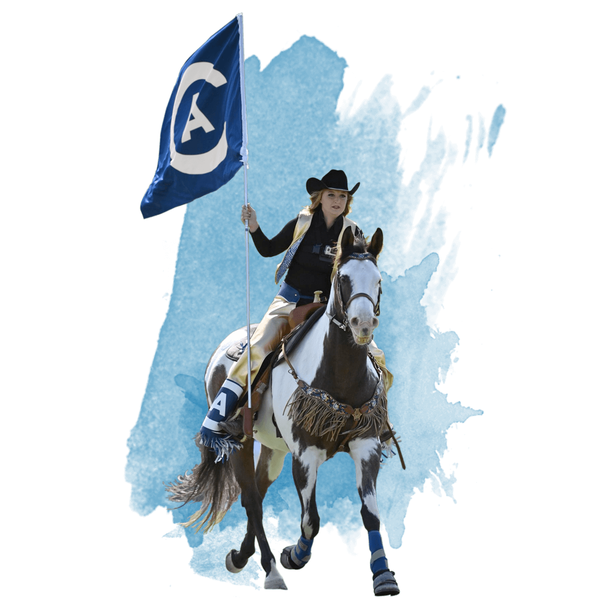 Maggie the Aggie riding her UC Davis branded horse out onto the football field