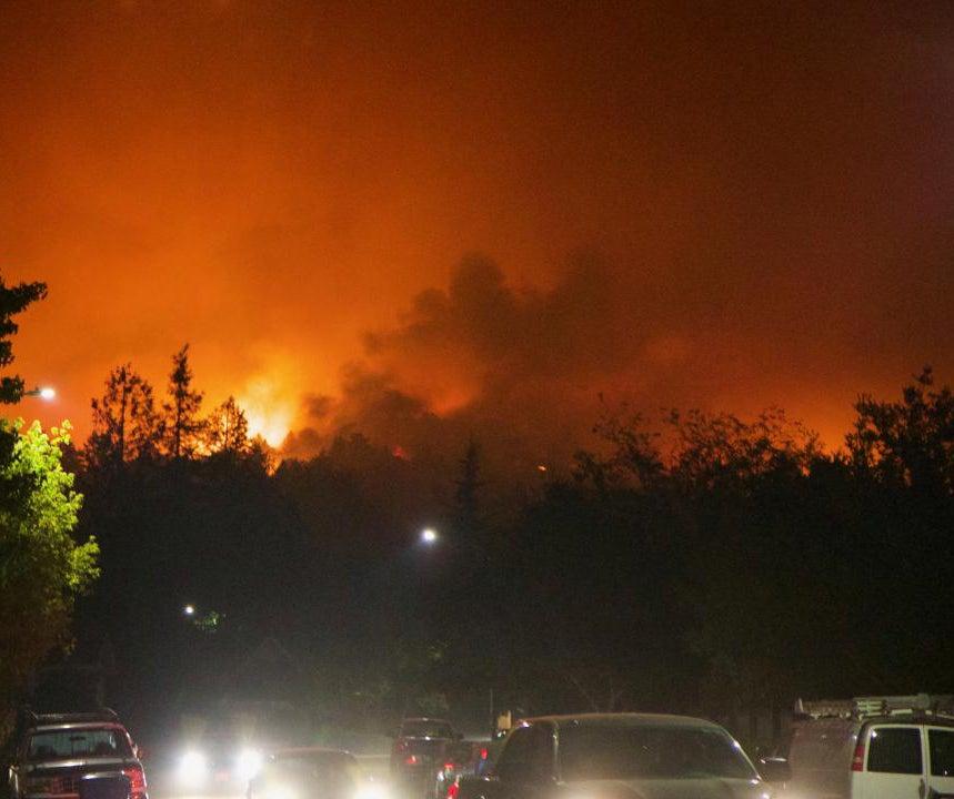 Fire burns bushes