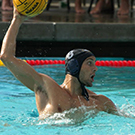 men's water polo uc davis athletics