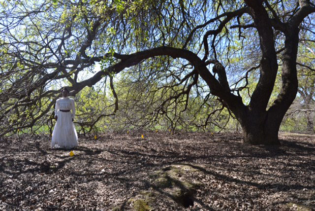 Woman in white dress, under leafless tree