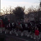 Clydesdales walking through campus