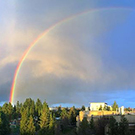 Rainbow over UC Davis