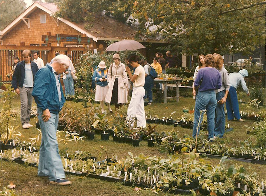 Shoppers at a plant sale in 1982.