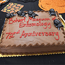 A cake decorated with fake bugs