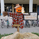 A scarecrow on the UC Davis campus