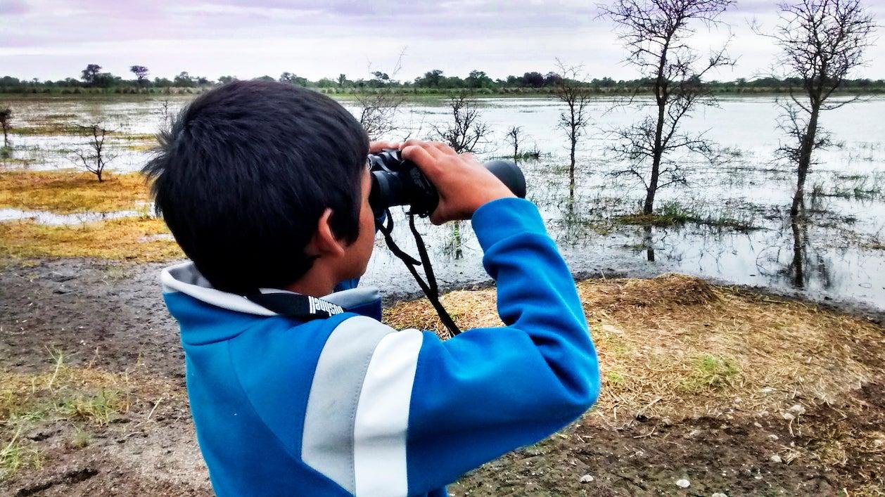 Boy with binoculars looks across wetlands for birds
