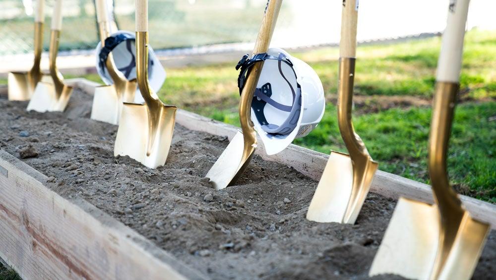 Gold shovels, standing in dirt