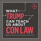 Logo for What Trump Can Teach Us About Con Law