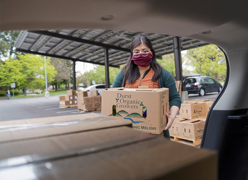 Woman loads boxes of food into car.