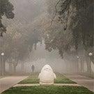Mrak Mall shrouded in fog.