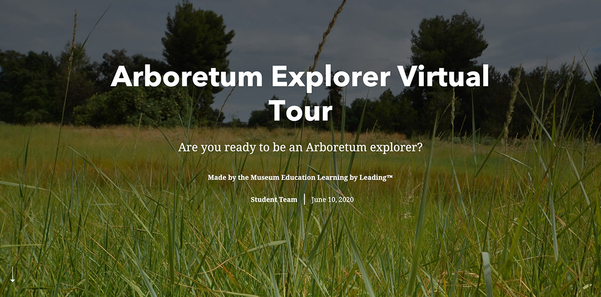 Title page for online tour, with writing atop a field of grass with trees on horizon.