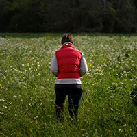 Kate Scow walks in a field planted with a cover crop at Skyelark Ranch in Brooks, CA