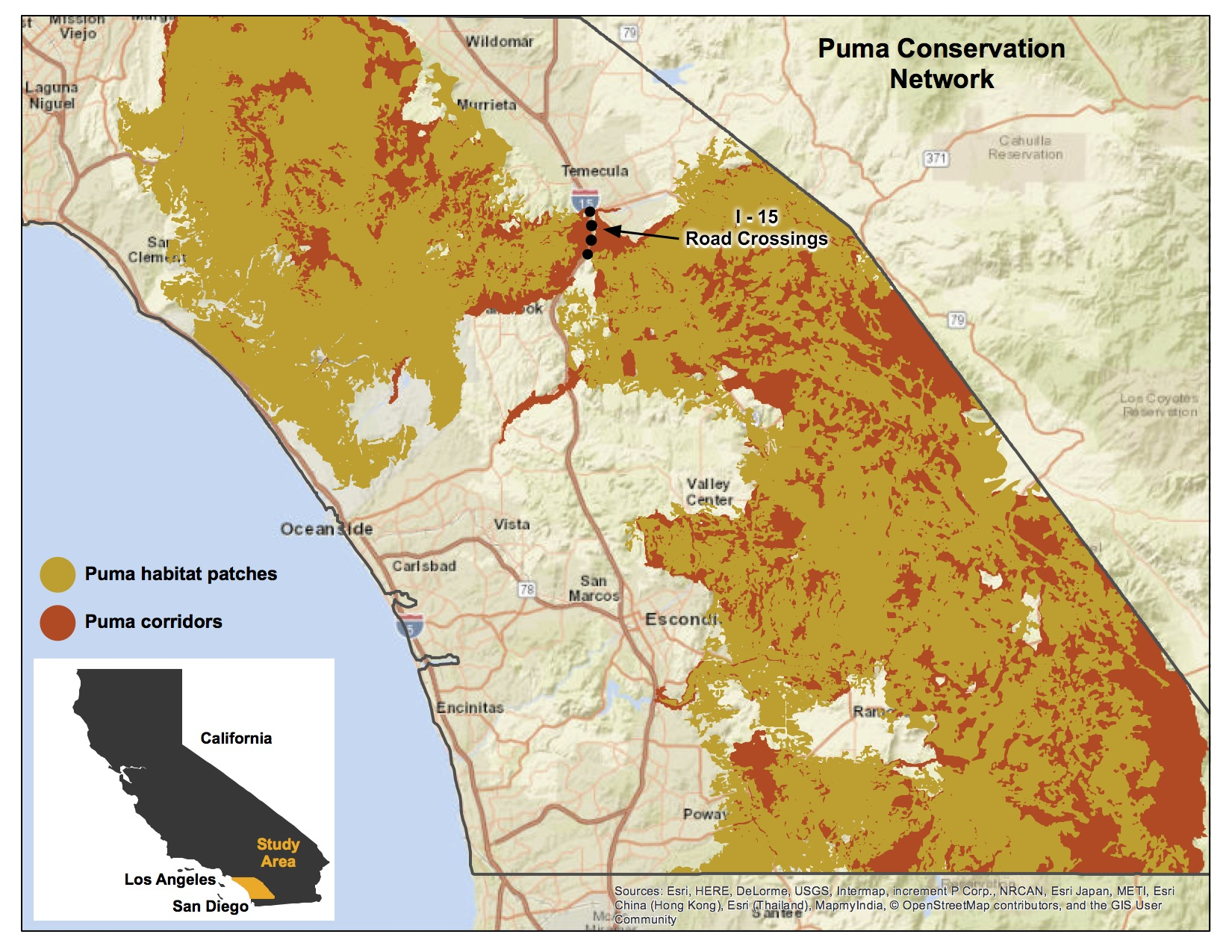 Puma conservation network